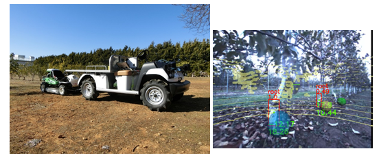 Autonomous Orchard Vehicle 果樹園自動走行車 ゴルフカート 草刈り ディープラーニング LiDAR AIプロ